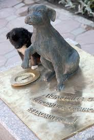 Достопримечательности Тюмени: памятник бедомной собаке в Тюмени